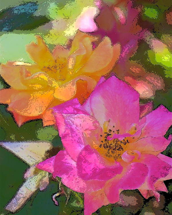 Floral Poster featuring the photograph Rose 114 by Pamela Cooper