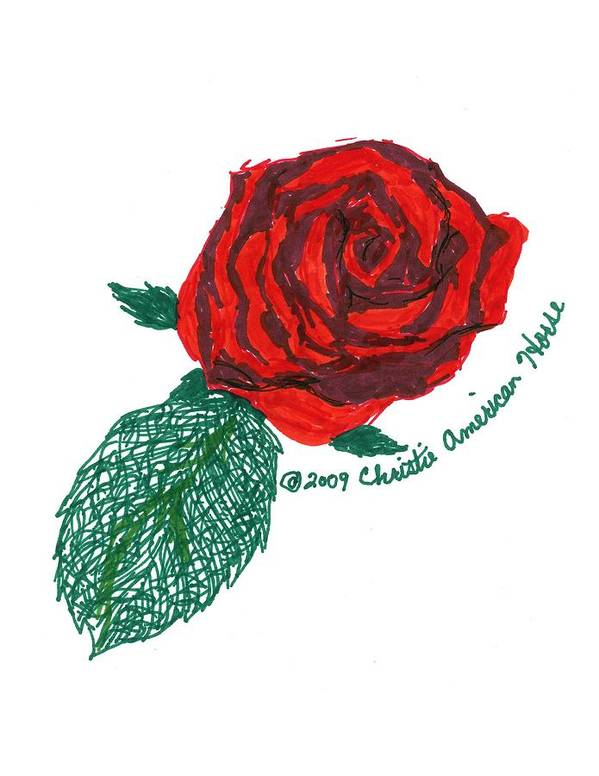 Pen & Ink Poster featuring the drawing Roses Are Red... by Christie American Horse
