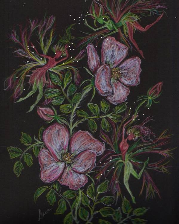 Wild Flowers Poster featuring the drawing Roses Run Amok by Dawn Fairies