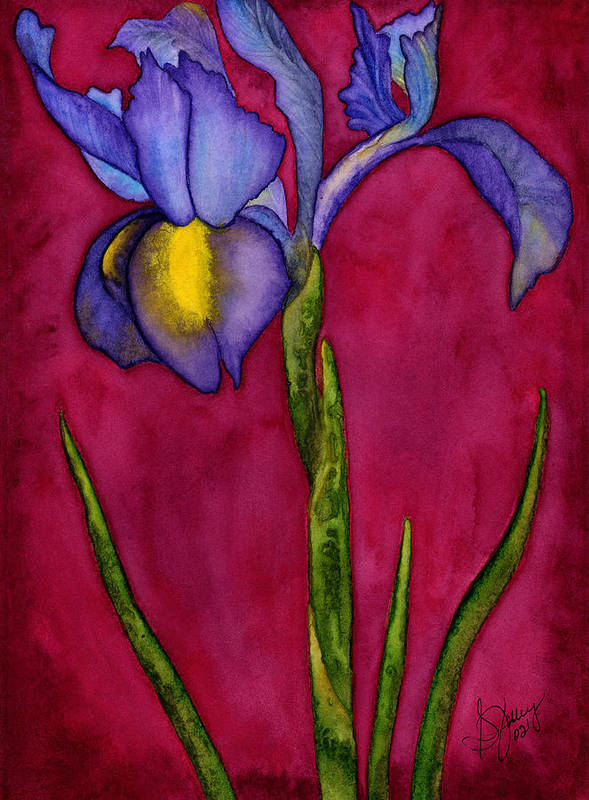 Iris Poster featuring the painting Royal Dutch by Stephanie Jolley