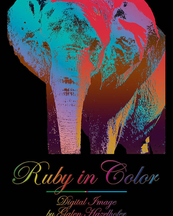 Elephant Poster featuring the digital art Ruby In Color by Galen Hazelhofer