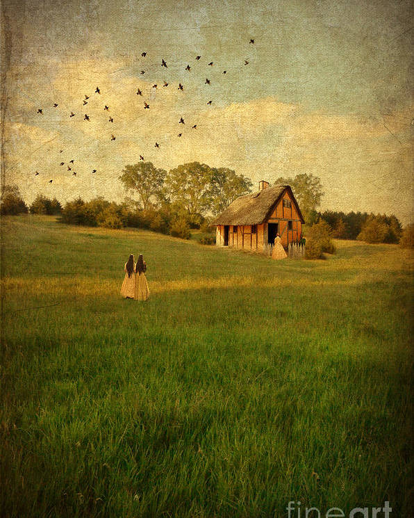 House Poster featuring the photograph Rural Cottage by Jill Battaglia