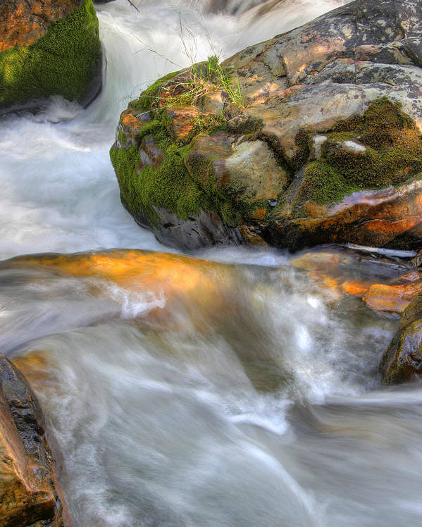River; Stream; Creek; Rivulet; Brook; Water; Fall; Falls; Waterfall; Watercourse; Cascade; Torrent; Poster featuring the photograph Rushing Water 2 by Douglas Pulsipher