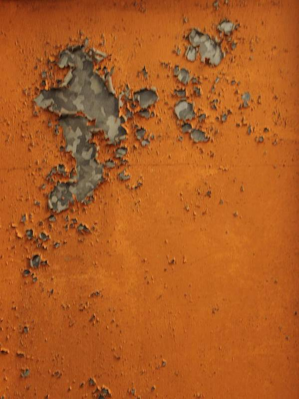 Poster featuring the photograph Rust 2 by Michael Raiman