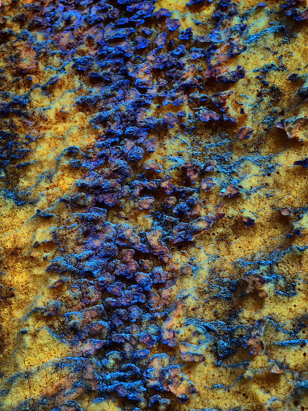 Rust Poster featuring the photograph Rust Abstract 7 by Lilia D