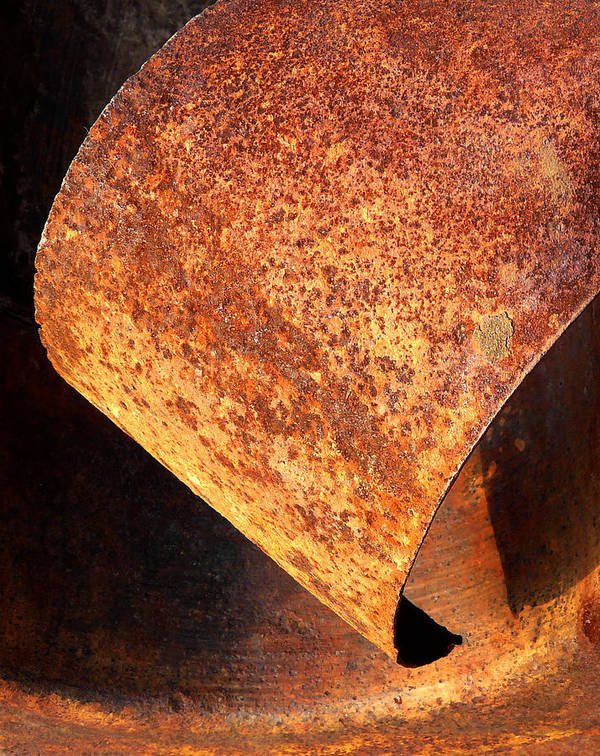 Rust Poster featuring the photograph Rusty Curl 2 by Elizabeth McPhee