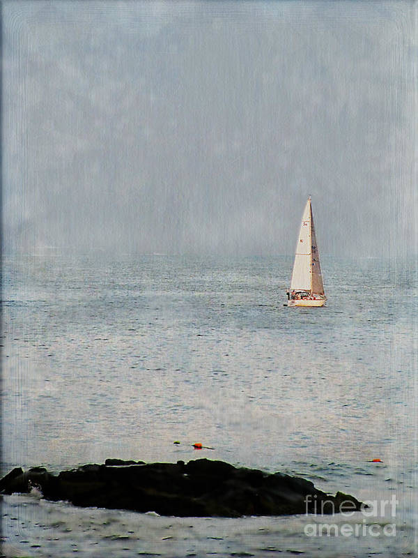 Sailboat Poster featuring the photograph Sail Away by Colleen Kammerer