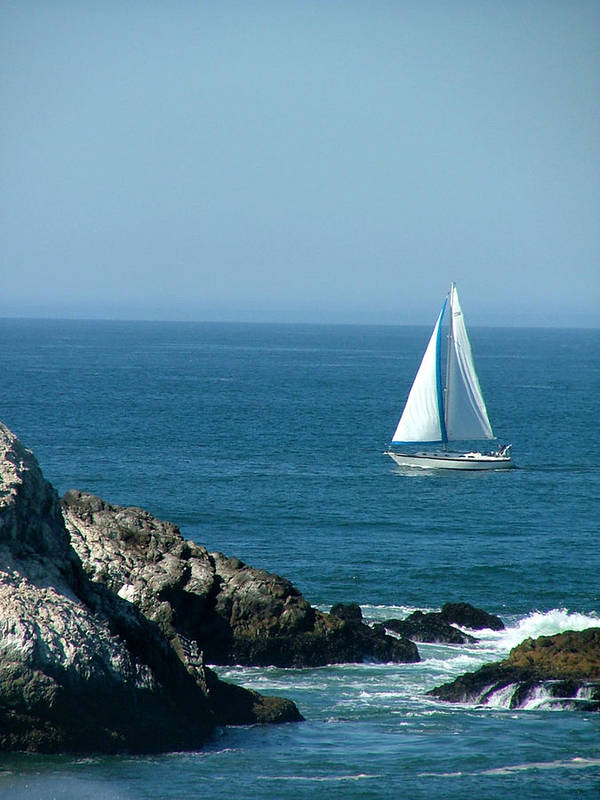 Boats Poster featuring the photograph Sail Away by Donna Thomas