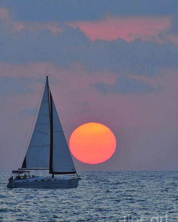 Sail Boats Poster featuring the photograph Sailboat At Sunset by Shay Levy