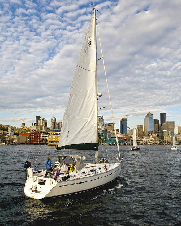Seattle Poster featuring the photograph Sailing In Seattle by Tom Dowd