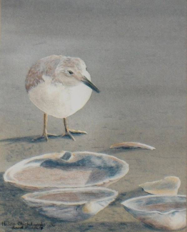 Sandpiper Poster featuring the painting Sand Puddles by Haldy Gifford