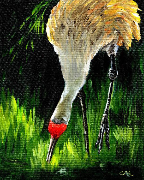 Bird Poster featuring the painting Sandhill Crane by Carol Allen Anfinsen