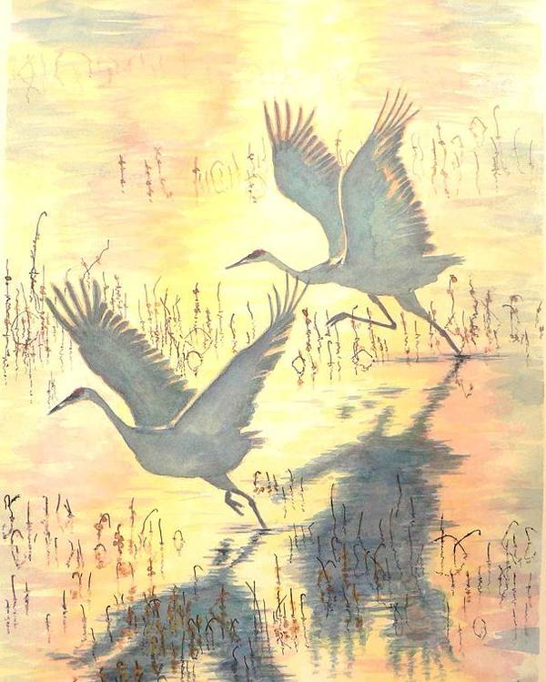 Cranes Taking Flight Poster featuring the painting Sandhill Cranes by Dan Bozich