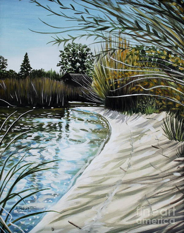 Landscape Poster featuring the painting Sandy Reeds by Elizabeth Robinette Tyndall