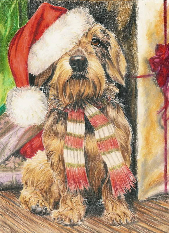 Hound Group Poster featuring the drawing Santas Little Yelper by Barbara Keith