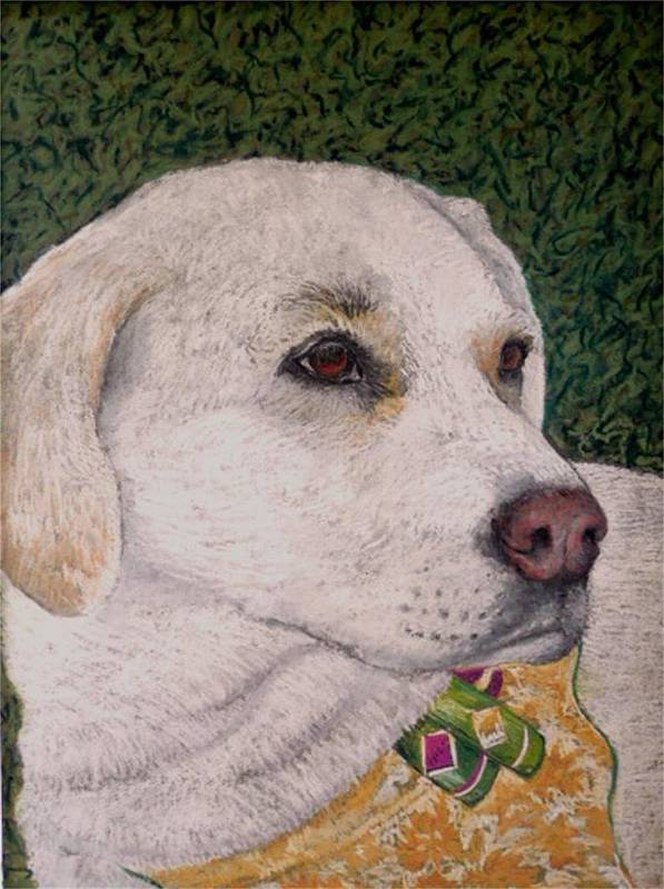 Dog Poster featuring the painting Sara by David Horning