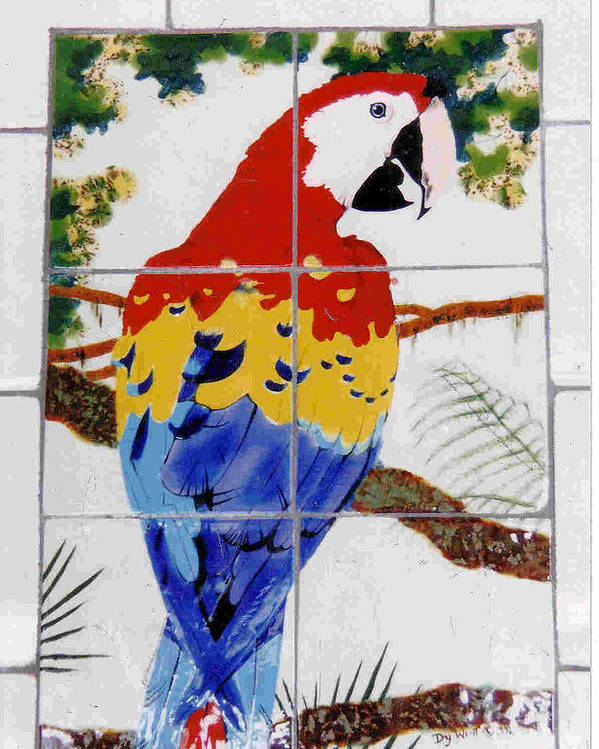 Parrots Poster featuring the painting Scarlet Macaw by Dy Witt