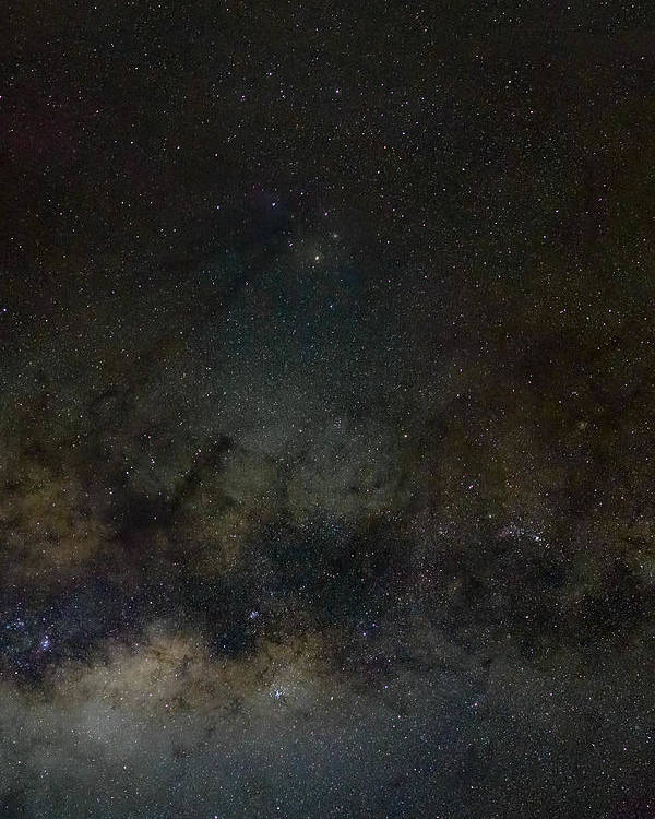 Star Poster featuring the photograph Scorpius And The Milky Way by Teale Britstra
