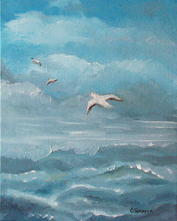 Seascape Poster featuring the painting Seabirds by Catherine Sprague