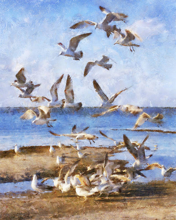 Seagulls Poster featuring the digital art Seagull Convention by Francesa Miller