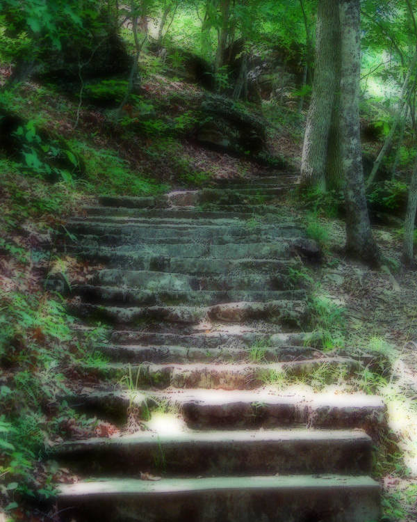 Stairs Poster featuring the photograph Second Ethereality by Carl Perry