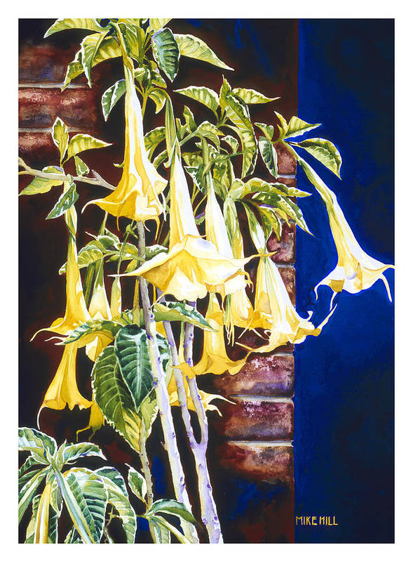 Angel Trumpets Yellow Bush Tree Bricks Blue Background Flowers Poster featuring the painting Seventh Heaven by Mike Hill