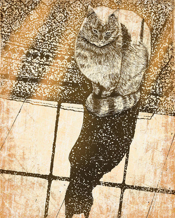 Animals Poster featuring the drawing Shadow Cat by Laura Brightwood