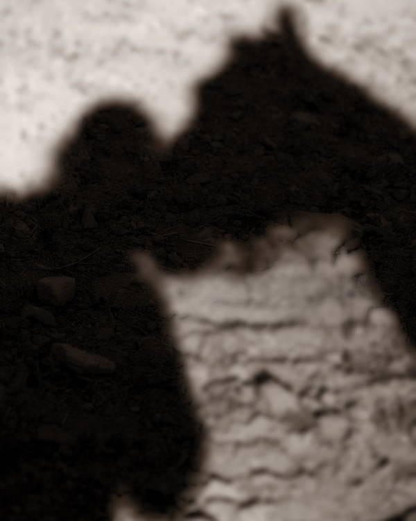 Shadow Poster featuring the photograph Shadow Of Horse And Girl - Vertical by Angela Rath