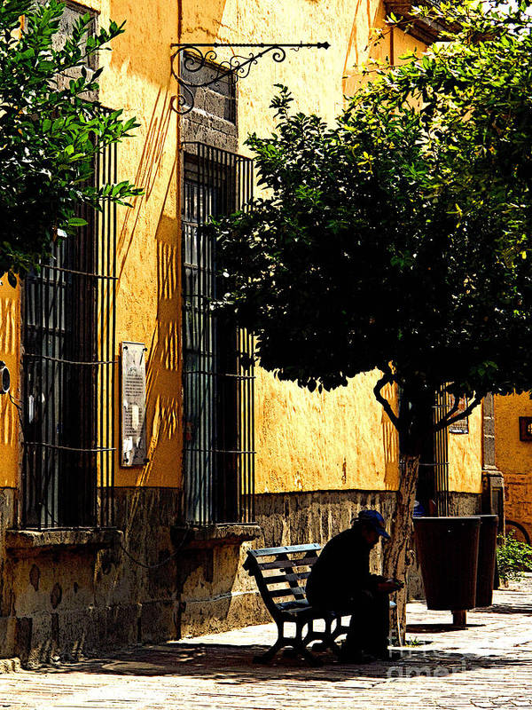 Tlaquepaque Poster featuring the photograph Shady Bench by Mexicolors Art Photography