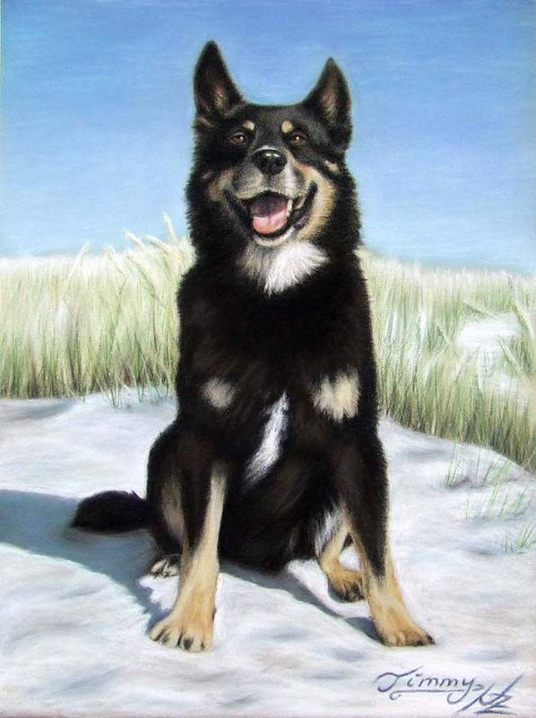 Dog Poster featuring the pastel Shepherd Mix Timmy by Nicole Zeug