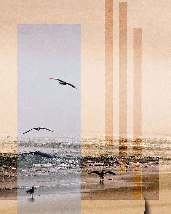 Abstract Poster featuring the photograph Shore Collage by Steve Karol