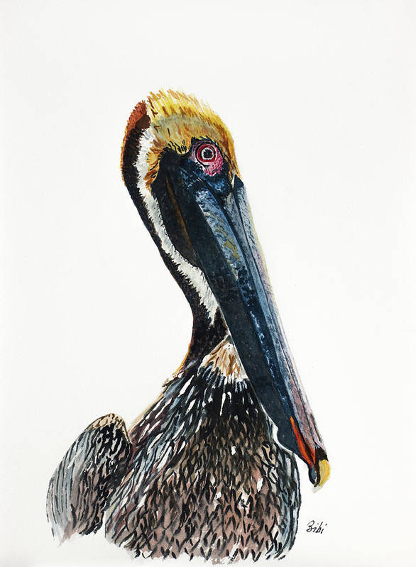 Pelican Poster featuring the painting Showing Off by Bibi Gromling