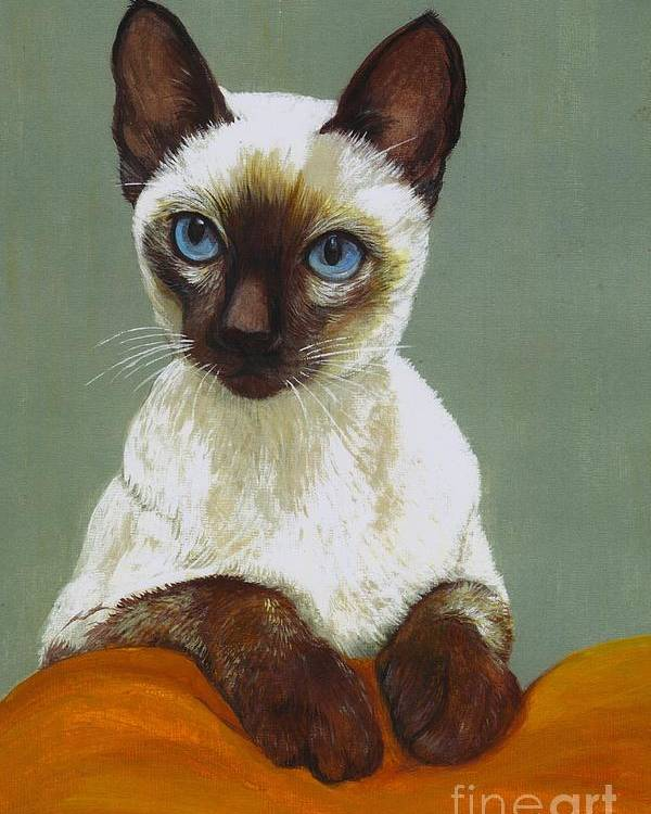 Siamese Poster featuring the painting Siamese Cat by Morgan Fitzsimons