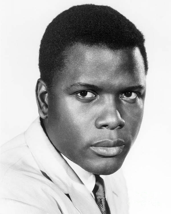 20th Century Poster featuring the photograph Sidney Poitier (1924-) by Granger