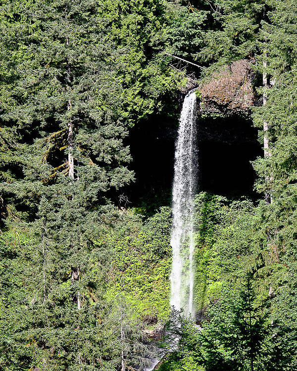 Waterfalls Poster featuring the photograph Silver Falls Or by Liz Santie