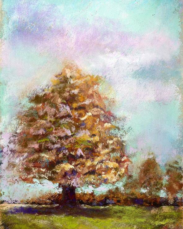 Pastel Poster featuring the pastel Simple Tree by Peter R Davidson