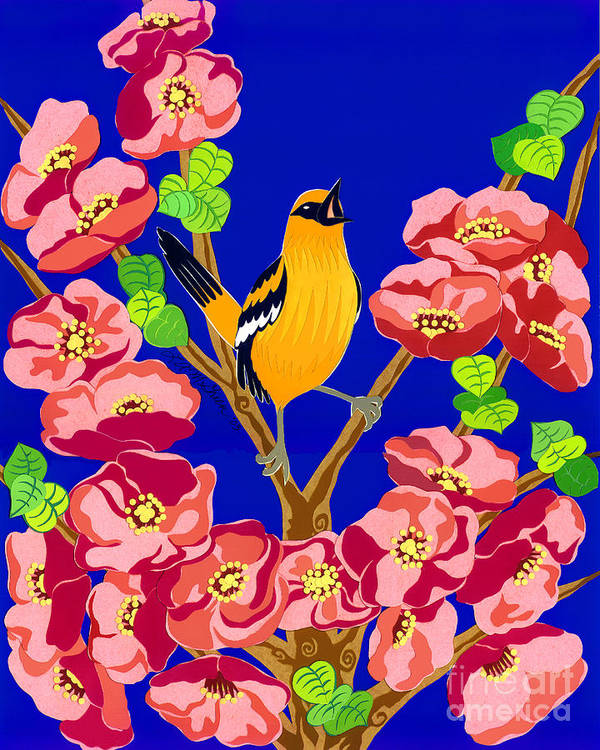 Nature Poster featuring the drawing Singing Oriole by Lucyna A M Green