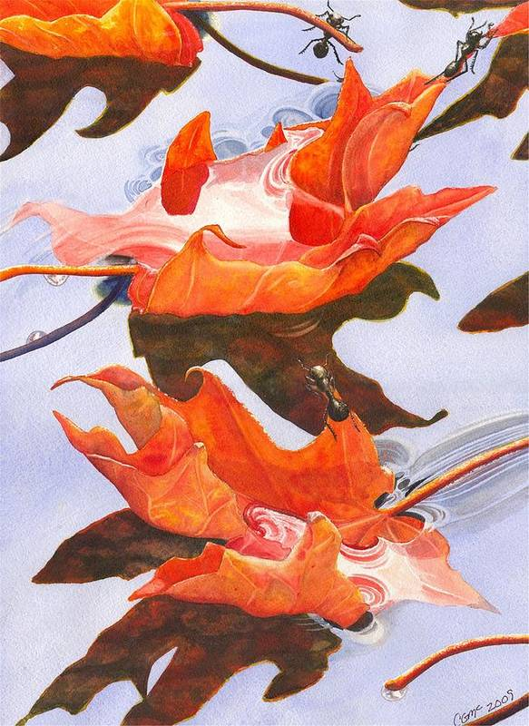 Leaf Poster featuring the painting Sinking Feeling by Catherine G McElroy