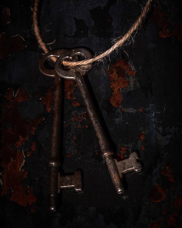 Antique Poster featuring the photograph Skeleton Keys by Erin Cadigan