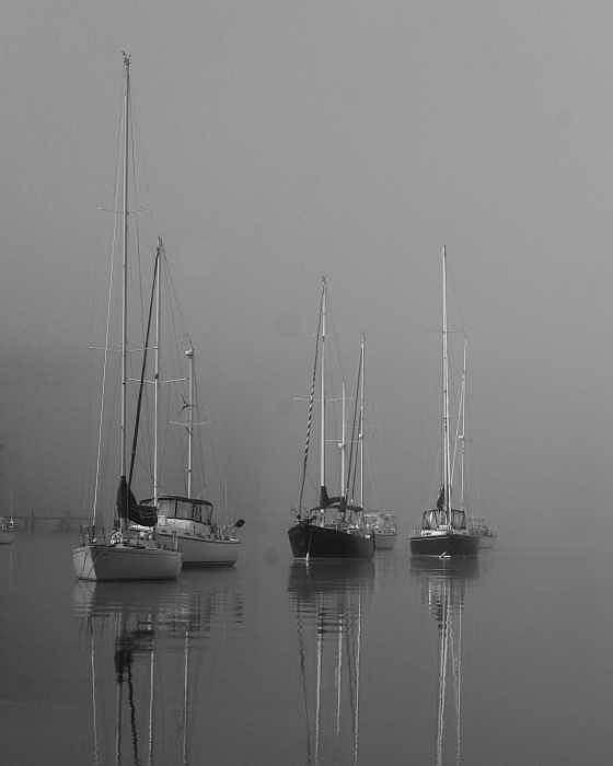 Boat Poster featuring the photograph Sleeping Yachts by Arthur Sa