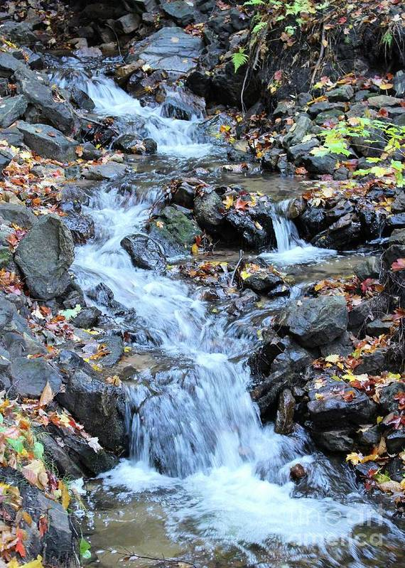 Water Poster featuring the photograph Small Waterfall 2 by Brenda Ackerman
