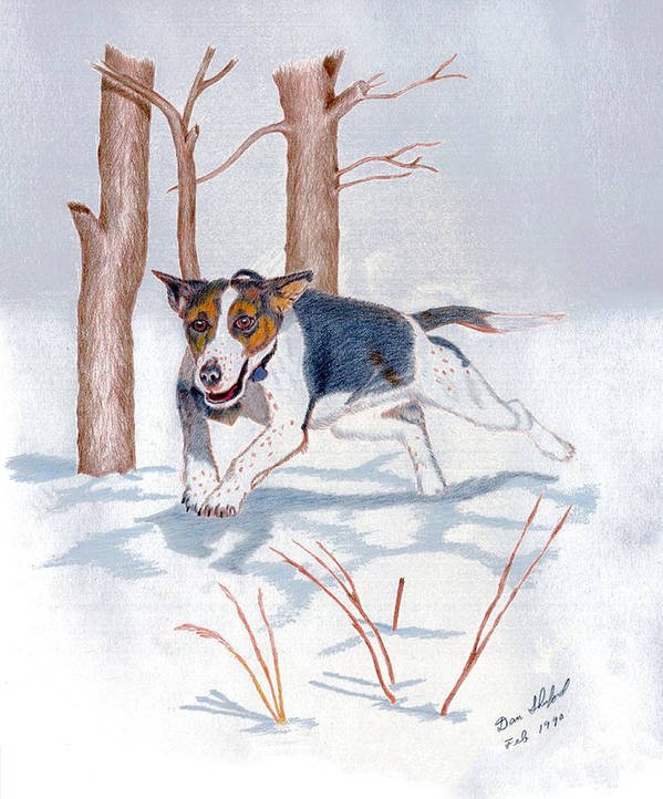 Dan Shuford Poster featuring the drawing Snow Bound by Daniel Shuford