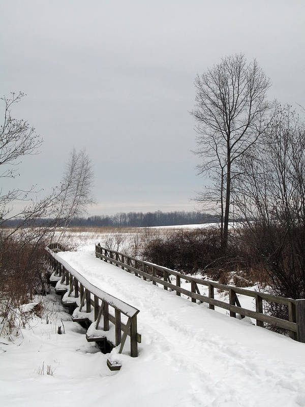Snow Poster featuring the photograph Snowy Bridge by Andrew Kazmierski