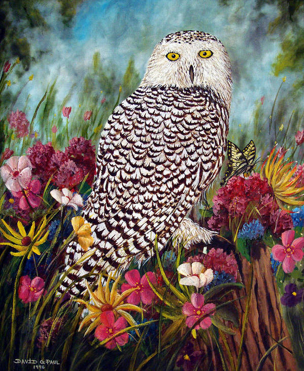 Owl Poster featuring the painting Snowy Owl by David G Paul