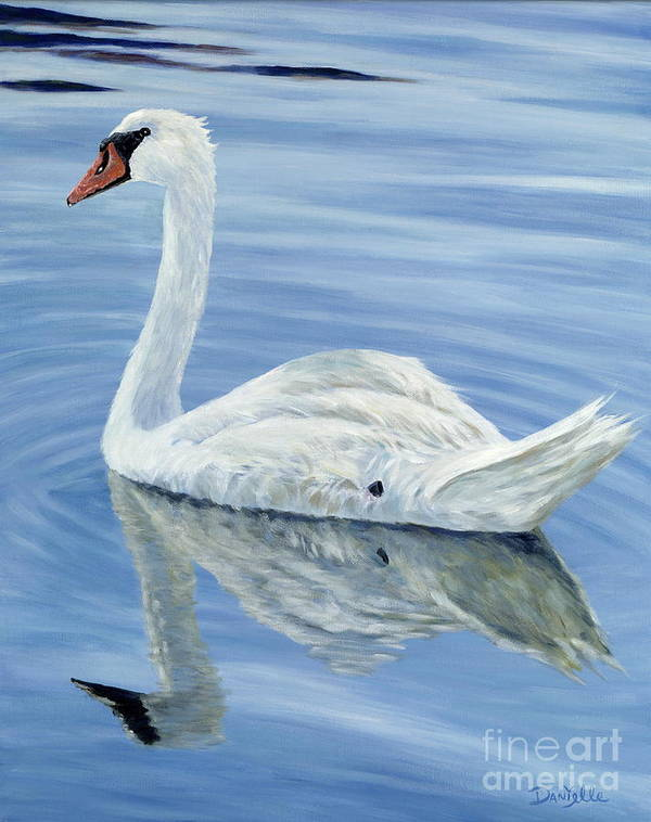 Swan Poster featuring the painting Solitary Swan by Danielle Perry