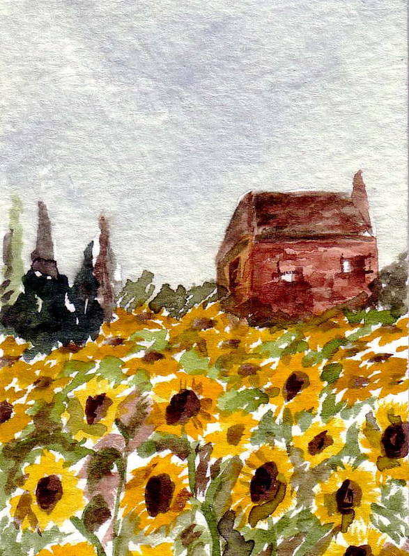 Original Art Poster featuring the painting Sonoma Hillside Series Sunflowers by K Hoover