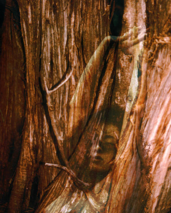Nude Poster featuring the photograph Soon To Be Carved by Richard Henne