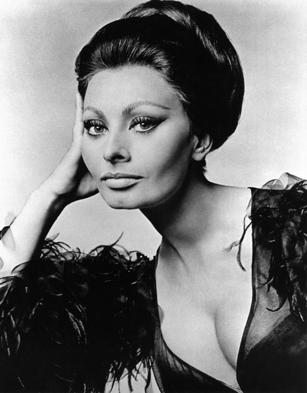 1960s Poster featuring the photograph Sophia Loren, In Costume For Arabesque by Everett
