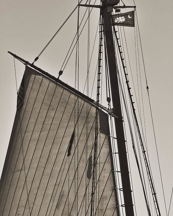 Spirit Of South Carolina Poster featuring the photograph Spirit Of South Carolina Schooner Sailboat Sail by Dustin K Ryan