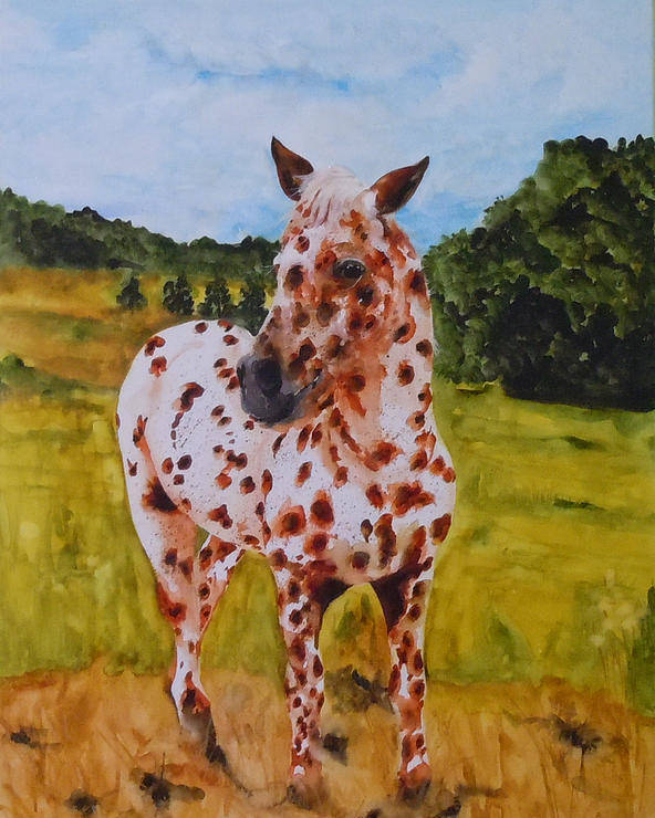 Horse Poster featuring the painting Spotted in Hawaii by Jean Blackmer